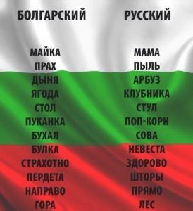 wpid-urok-bolgarskogo-yazyka_i_1 (1)